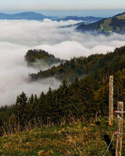 Leben heisst rückwärts gelesen Nebel -kein Wunder dass man manchmal nicht durchblickt 🙄 #wandern #austria #hiking #berge...